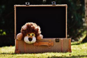 Kinderen en reizen = véél bagage